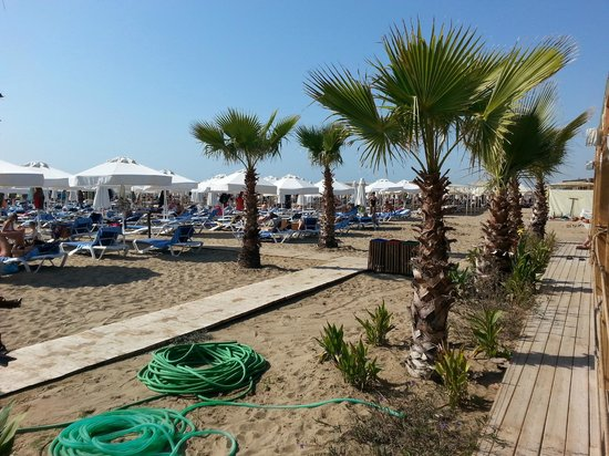 Dream World Resort: Private beach area
