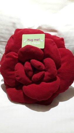 Butterfly on Wellington: Hug Me pillows