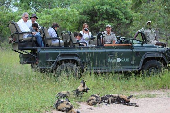 Sabi Sabi Selati Camp: safari