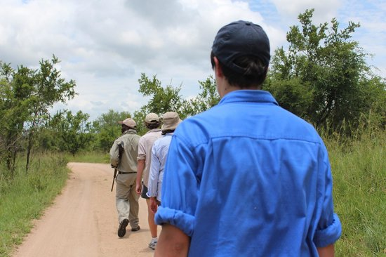 Sabi Sabi Selati Camp : Walking safari