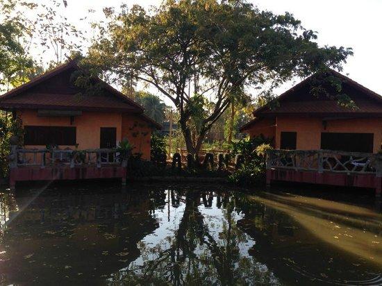 Baan Klang Tong: ロッジ外観。木がとてもきれいに選定されています。BANANA(笑)