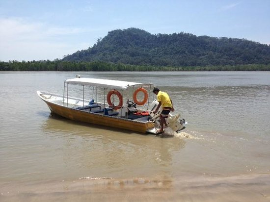 Permai Rainforest Resort: A typical boat ready to take you off on an excursion