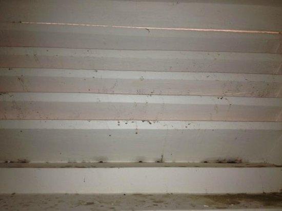 Sanmali Beach Hotel : Window in the shower