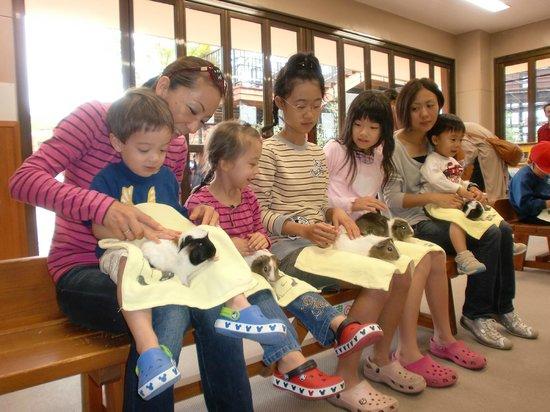 Itozu no Mori Zoological Park: Baby animals
