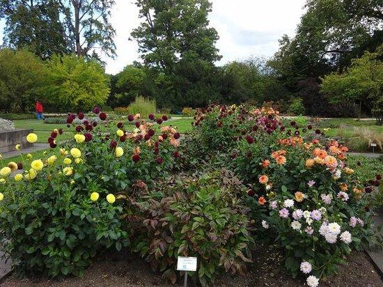 Stiftung Schloss Dyck: Teil einer schön gestalteten Gartenanlage