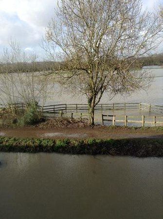 The Mill Hotel: Flooded water meadow
