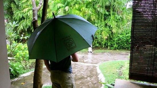 Mimpi Resort Menjangan: Two umbrellas supplied per room