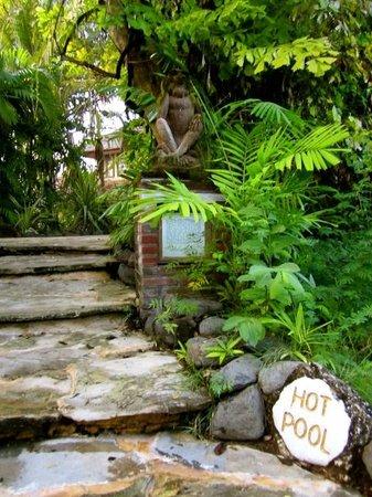 Mimpi Resort Menjangan: hot springs