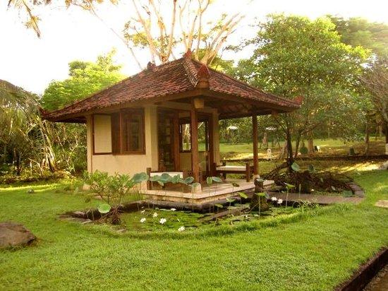 Mimpi Resort Menjangan: temple