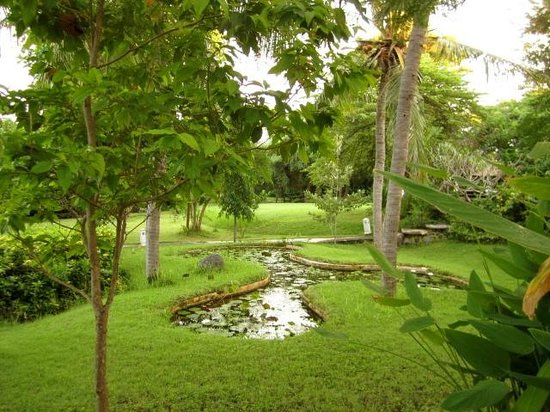 Mimpi Resort Menjangan: Lush grounds