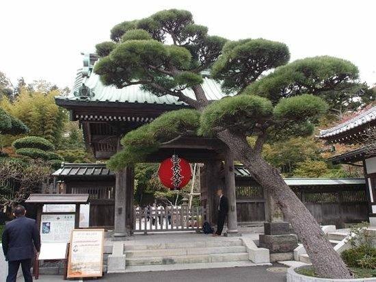 Hase-dera: Entrance to Hasedera Temple