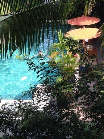 The Pavilion : pool