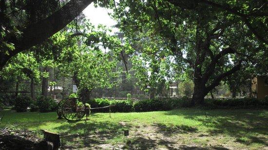 Posada El Pucara: parque