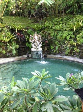 Villa Sarna Ubud : pool