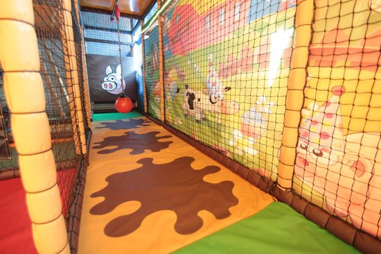 The Play Farm: Inside the play area
