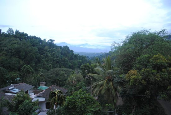 Nature Walk Resort : View from our room