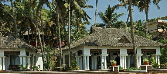 Palm Tree Heritage : Bungalow