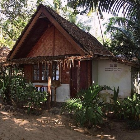 Dawn of Happiness: Beach bungalow