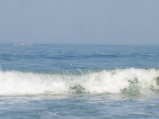 Praia da Nazare: Волны!