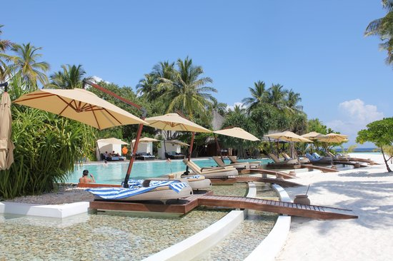 Constance Halaveli: Pool! nice area to relax although not many people use it as everyone has their own pool in the v
