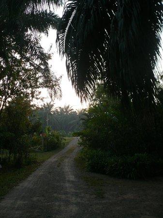 Suan Bang Bon Hostel