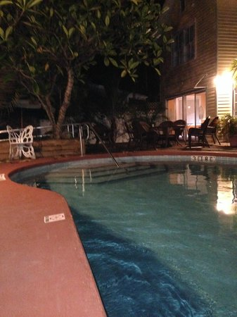 Wicker Guesthouse: The Pool before dawn