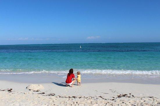 Aquamarine Beach Houses: Our beach