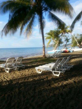 Brisas Sierra Mar Hotel: The beach