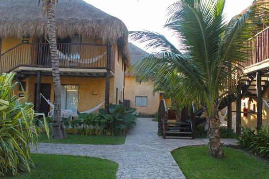 أليجرو كوزوميل ريزورت: very clean resort