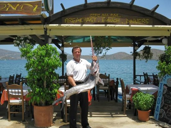 Olondi Restaurant : Yiannis, The Owner and Erm, A Mahoosive Fish!!!