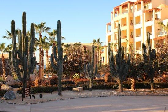 Pueblo Bonito Pacifica Golf & Spa Resort : Pacifica grounds
