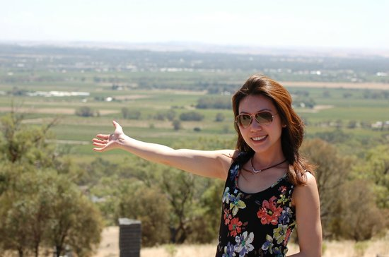 Barossa Valley Wine Tour with Wine Tastings and Lunch: Barossa Valley