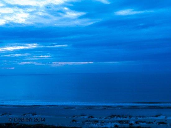 Omni Amelia Island Plantation Resort: Morning view