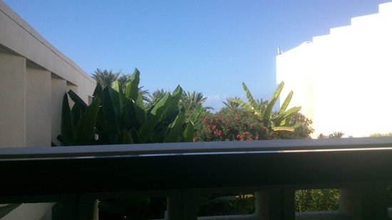 Constantinou Bros Athena Beach Hotel: Supposedly a sea view!