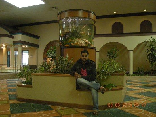 Holiday Inn Corpus Christi Airport Hotel & Conference Center: Lobby Area