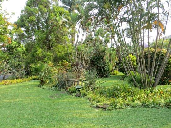 Royal Sheba Guesthouse: Jardin très bien entretenu