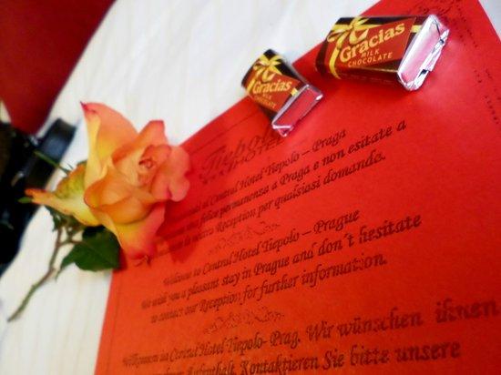Central Hotel Tiepolo: Rosa