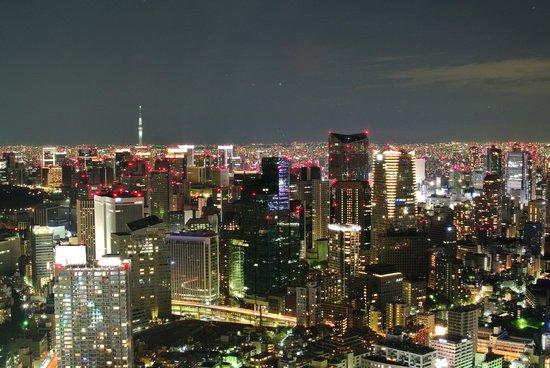 Tokyo City View Observation Deck (Roppongihills) : 遠眺晴空塔