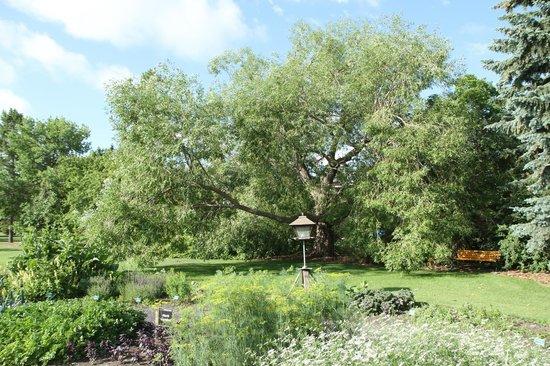 Olds College Botanic Gardens: Olds College Botanic Garden