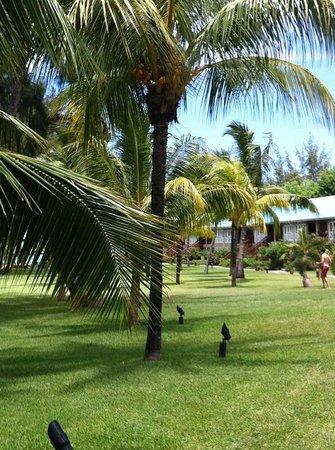 Club Med La Pointe aux Canonniers : Jardin