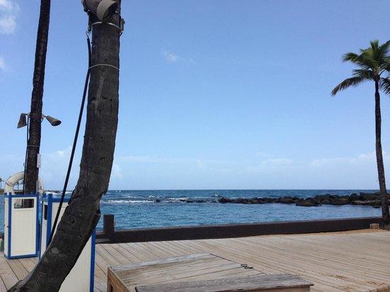 Condado Lagoon Villas at Caribe Hilton: Ocean from pool area