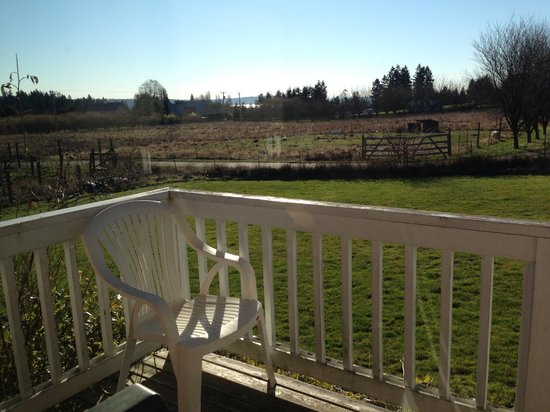 Bay Breeze B&B Cottages: View from small porch