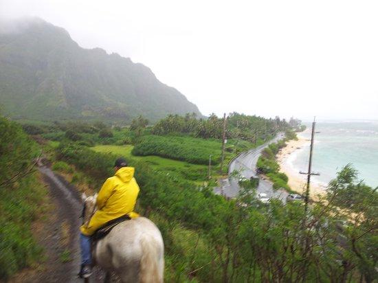 Kualoa: On the way to the valley