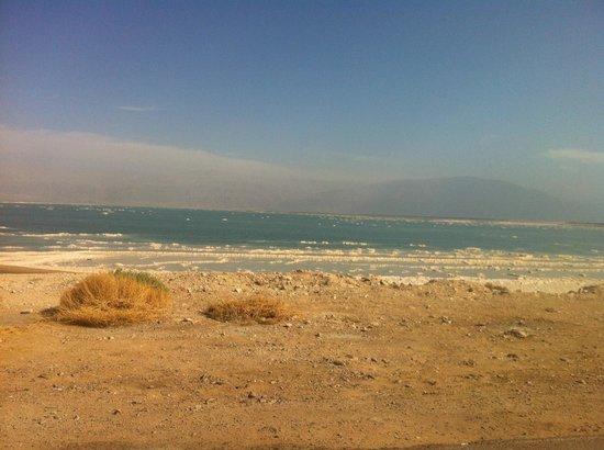 David Dead Sea Resort & Spa : A picture worth a 1000 words