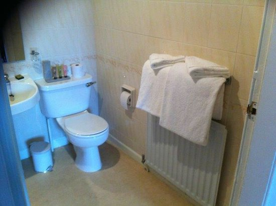 Old Manor Hotel: Baño suficiente