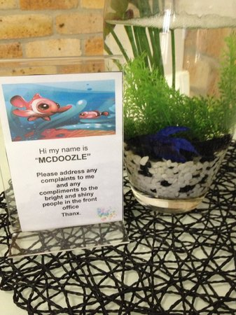 Ocean Park Motel: Our pet in the room, a fish!