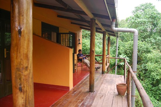 Gorilla Valley Lodge: The veranda overlooking the forest