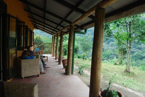 Gorilla Valley Lodge: Bar/restaurant