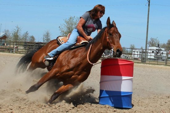 Goethe Trailhead Ranch: Arena