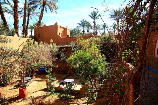 Riad Dar Zaouia: getlstd_property_photo
